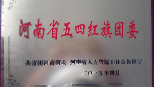 wuhaohongqituanwei.jpg